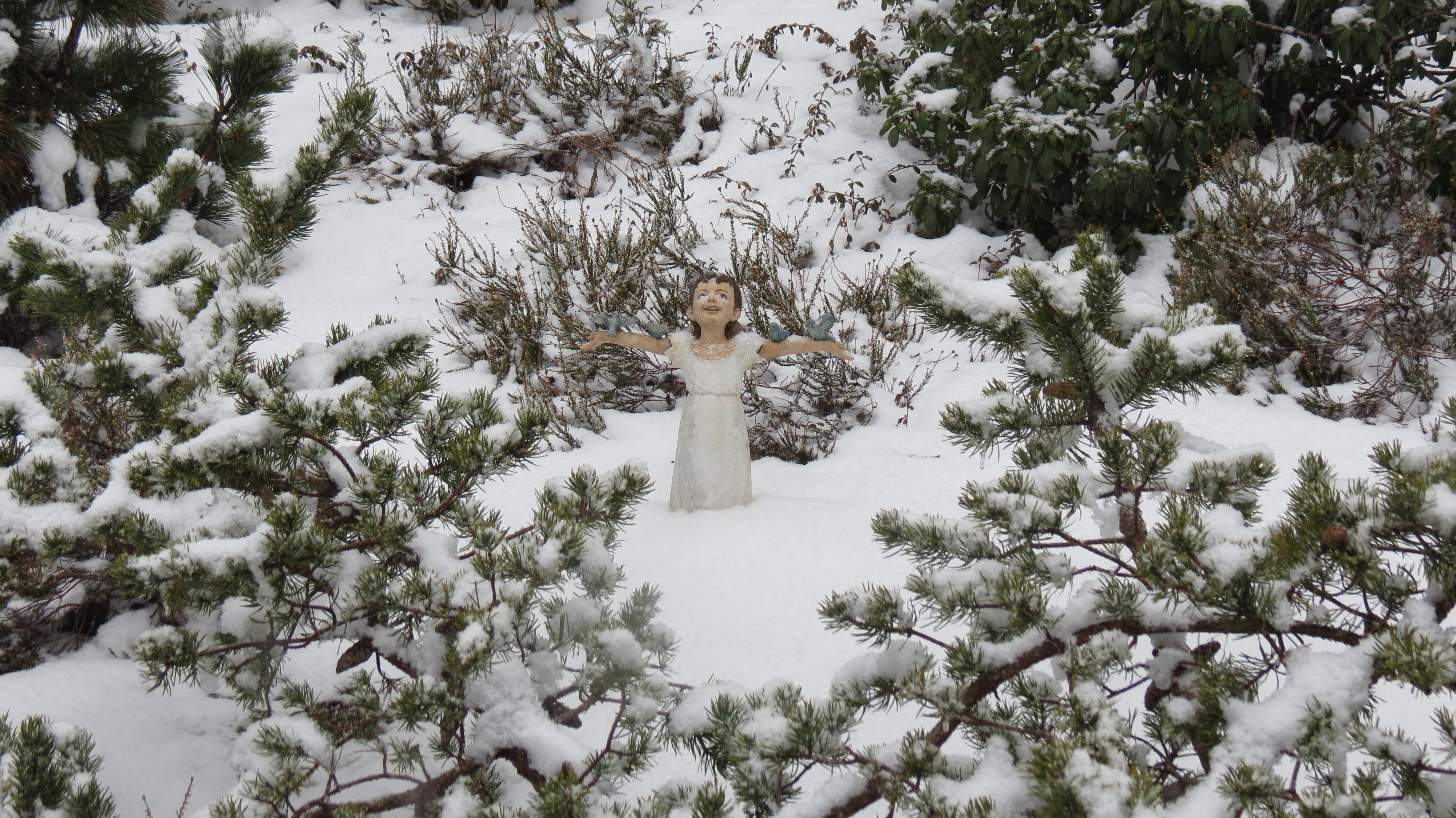 the garden in winter u2013 artisan landscapes